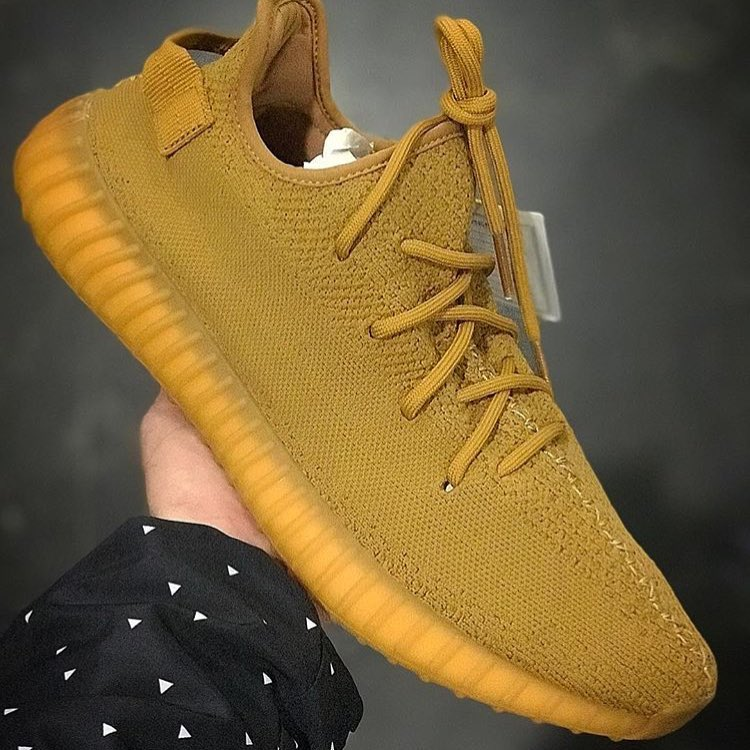 adidas,Yeezy Boost 350 V2  小麦色 Yeezy 350 Boost V2!全新配色曝光你觉得如何?