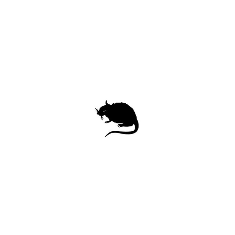 小丑,主题,Stray,Rats,New,Balance,三 小丑主题!Stray Rats x DC x New Balance 三方联名曝光!